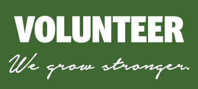 Volunteer For Fairfax Festival and EcoFest